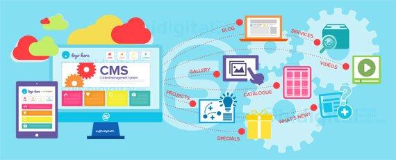 Website là gì? 6 loại website phổ biến hiện nay
