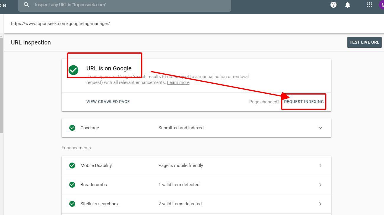 Màu xanh cho thấy URL đã được Google lập chỉ mục