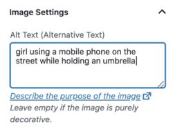 thuộc tính alt quan trọng với tối ưu hóa hình ảnh