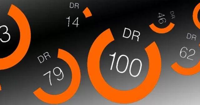 Domain Rating là gì? Những thông tin cơ bản bạn cần biết