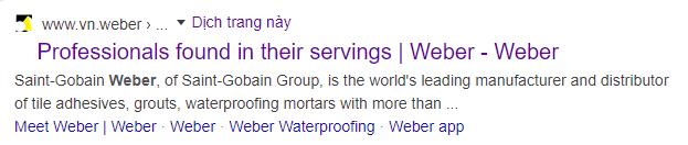 Thẻ  meta description của Weber
