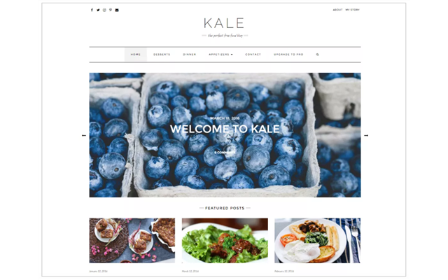 Theme WordPress: Kale
