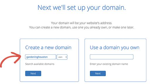 Lựa chọn tên để domain check