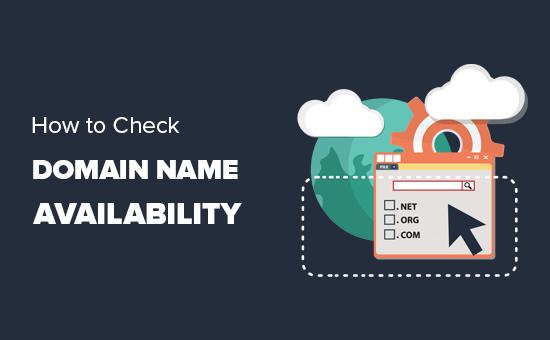 Các bước Domain check hoàn chỉnh