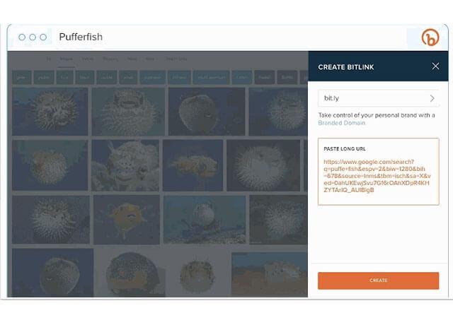 Hình ảnh rút gọn link trên Bitly.com trên Chrome Extensions   Top On Seek